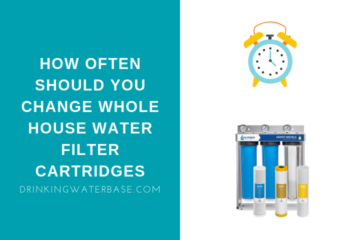 How Often Should You Change Whole House Water Filter Cartridges